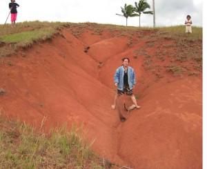 Wenn der Wald erstmal gefällt ist, führen die starken tropischen Regenfälle führen schnell zu Erosion des fruchtbaren Bodens